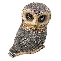 Owl Pot Bellys® Boxes - Saw-Whet Owl