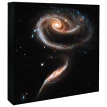Hubble Image Canvas Print: A Rose Made Of Galaxies