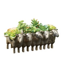 Sheepy Planter