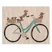 Doxiecycle Canvas Print