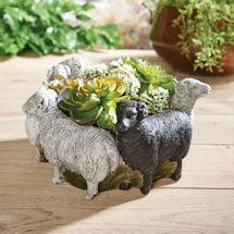 Ring of Sheep Planter