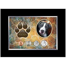 Rescued Year To Remember Dog 4 Coin Frame