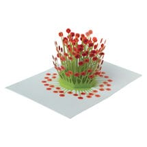 Pop-Up Poppies Greeting Cards  - Set of 6