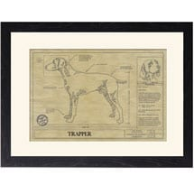 Personalized Framed Dog Breed Architectural Renderings - Weimaraner