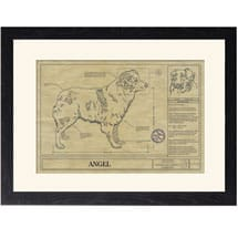 Personalized Framed Dog Breed Architectural Renderings - Australian Shepherd