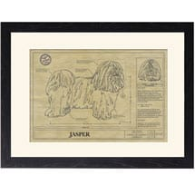 Personalized Framed Dog Breed Architectural Renderings - Havanese