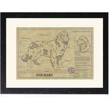 Personalized Framed Dog Breed Architectural Renderings - Newfoundland