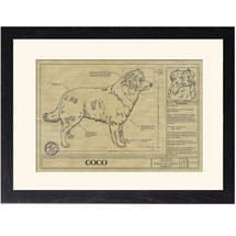 Personalized Framed Dog Breed Architectural Renderings - Border Collie