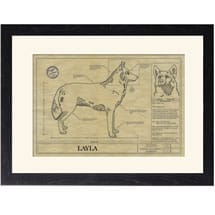 Personalized Framed Dog Breed Architectural Renderings - Siberian Husky