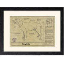 Personalized Framed Dog Breed Architectural Renderings - Greater Swiss Mountain Dog