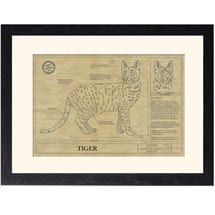 Personalized Framed Cat Breed Architectural Renderings - Egyptian Mau