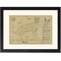 Personalized Framed Cat Breed Architectural Renderings - Savannah