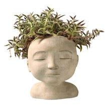 Head of a Man Indoor/Outdoor Planter