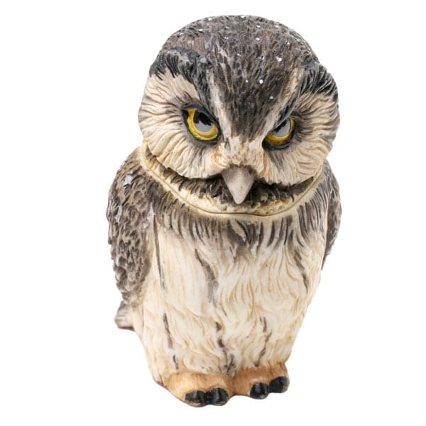 Owl Pot Bellys® Boxes - Boreal Owl | 4 Reviews | 5 Stars ...