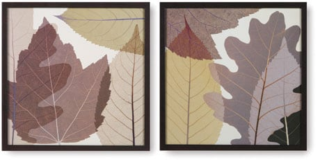 4 Leaves Prints :  nature art home decor