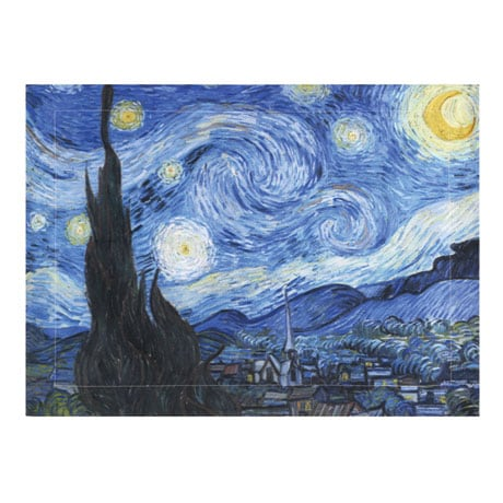 Van Gogh Starry Night Painting Set of 2 Shams