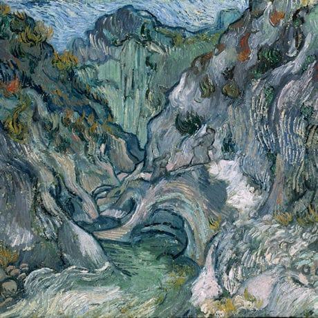 Van Gogh Ravine Reversible Rain Cape