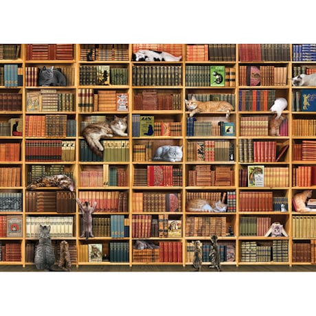 Books and Cats Puzzle