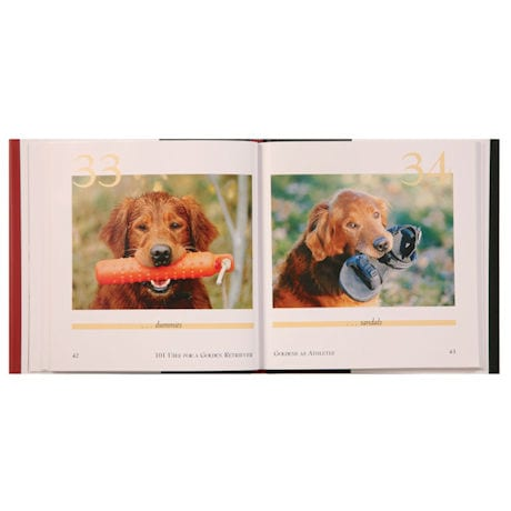 101 Uses For a Dog Book - Golden