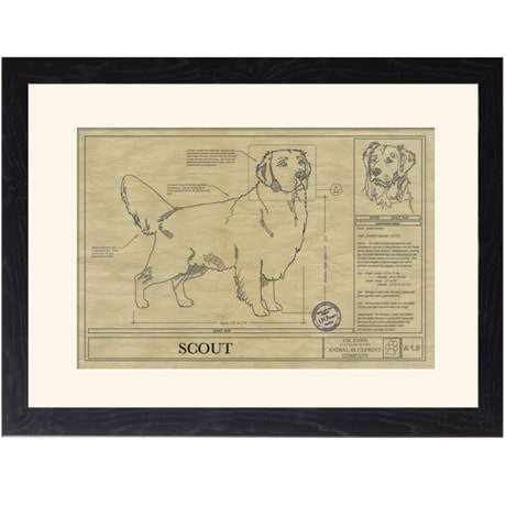 Personalized Framed Dog Breed Architectural Renderings - Golden Retriever