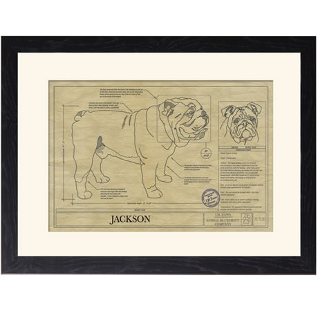 Personalized Framed Dog Breed Architectural Renderings - English Bulldog