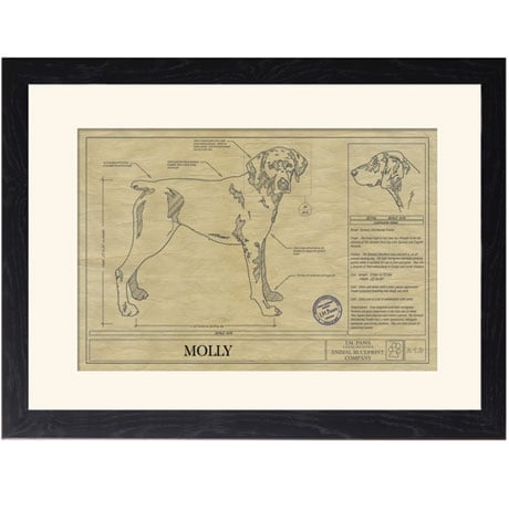 Personalized Framed Dog Breed Architectural Renderings - German Shorthair Pointer