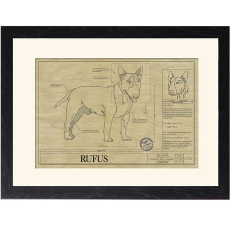 Personalized Framed Dog Breed Architectural Renderings - Bull Terrier