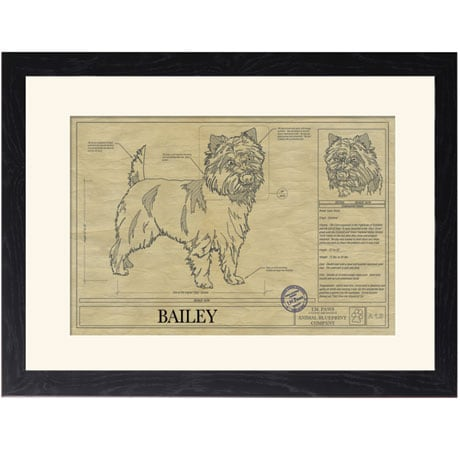Personalized Framed Dog Breed Architectural Renderings - Cairn Terrier