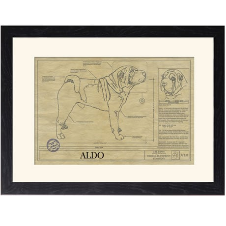 Personalized Framed Dog Breed Architectural Renderings - Chinese Shar-Pei