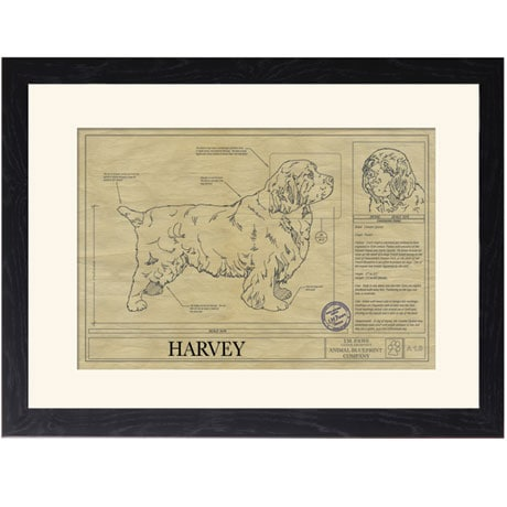 Personalized Framed Dog Breed Architectural Renderings - Clumber Spaniel