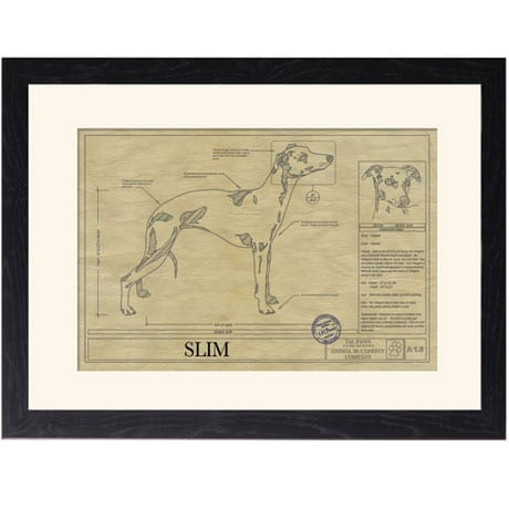 Personalized Framed Dog Breed Architectural Renderings - Whippet