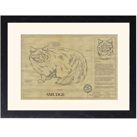 Personalized Framed Cat Breed Architectural Renderings - Birman