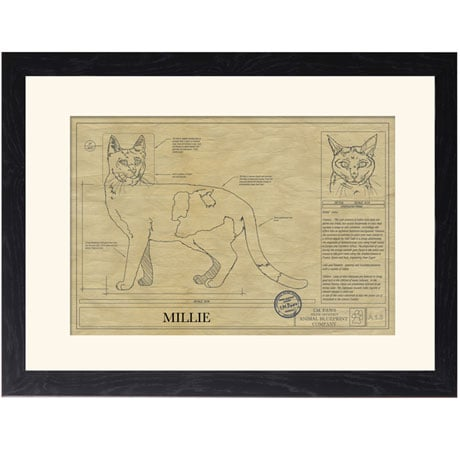 Personalized Framed Cat Breed Architectural Renderings - Calico