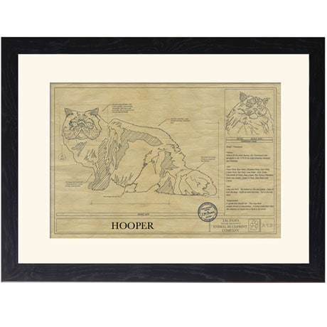 Personalized Framed Cat Breed Architectural Renderings - Himalaya