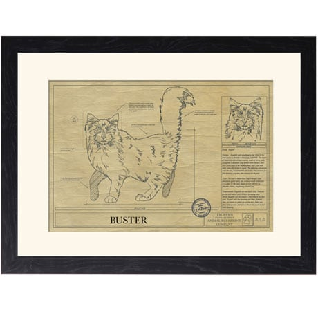 Personalized Framed Cat Breed Architectural Renderings - Ragdoll